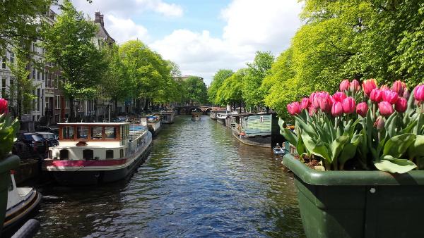 Holland! - 6 dagar
