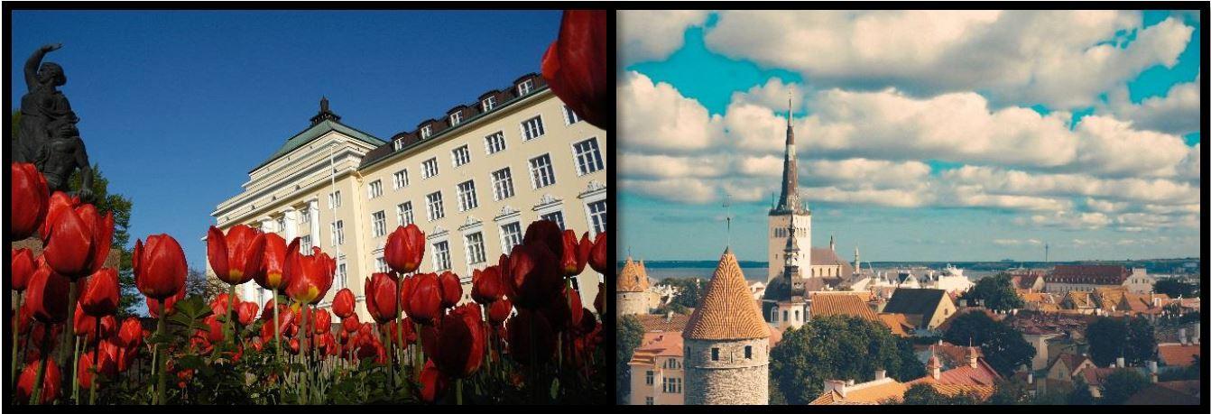 Möt våren i Tallinn